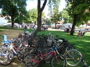 Biciklierdő Hajdúböszörményben - 2008