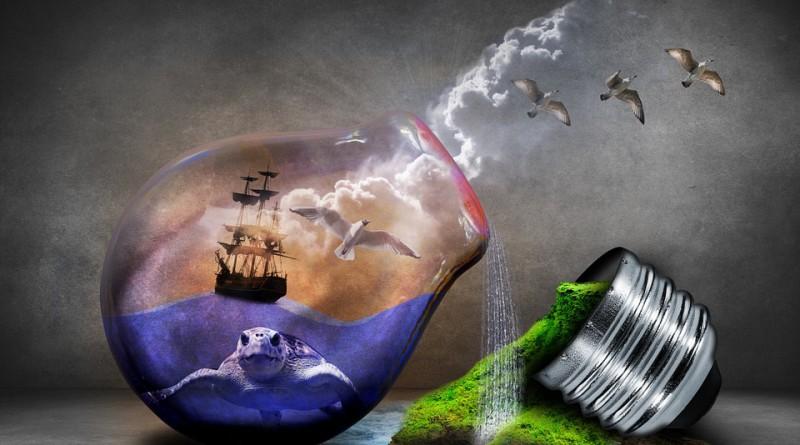 environmental-protection-544198_960_720