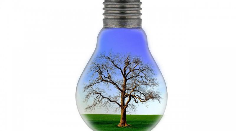 bulb-83140_1280