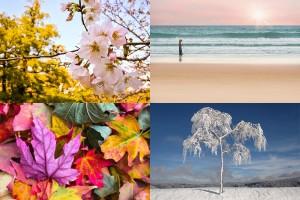 Az évszakok színeit használja fel a CMB rendszer - természetes színeinkhez igazítva - képek: Pixabax, MaxPixel Free photos