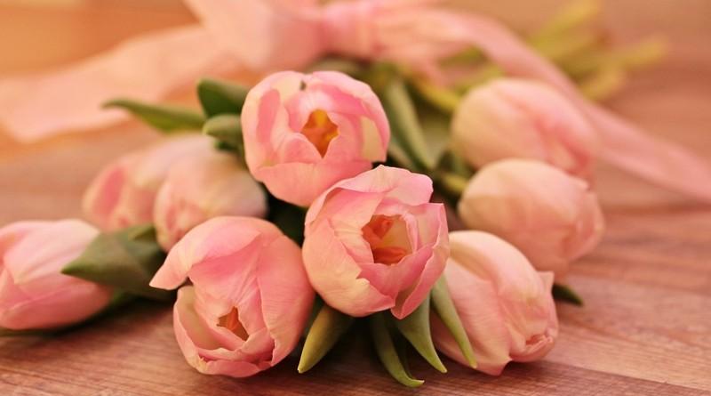 tulips-2068666_960_720