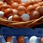 Termelői tojás - a tojástartó többször használható... Pixabay.com
